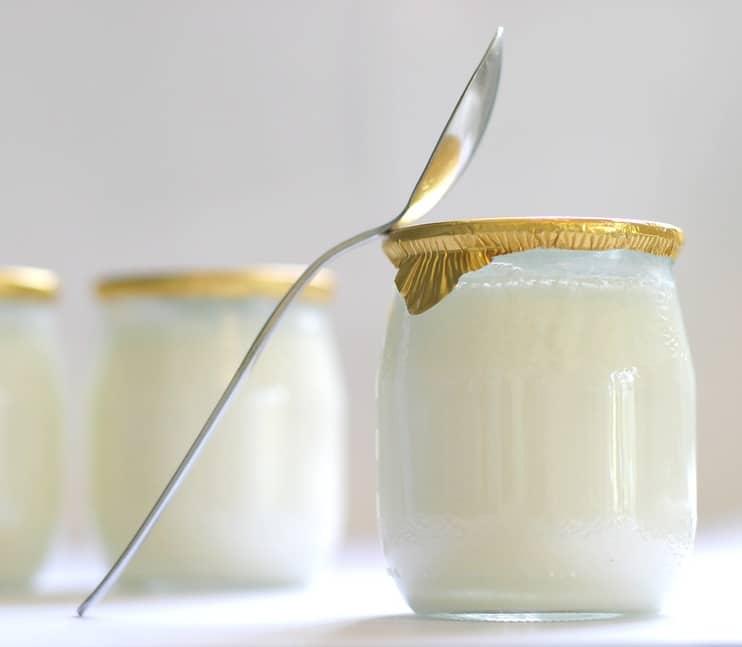 yaourt à l'ancienne