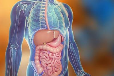 microbiotics page gastro