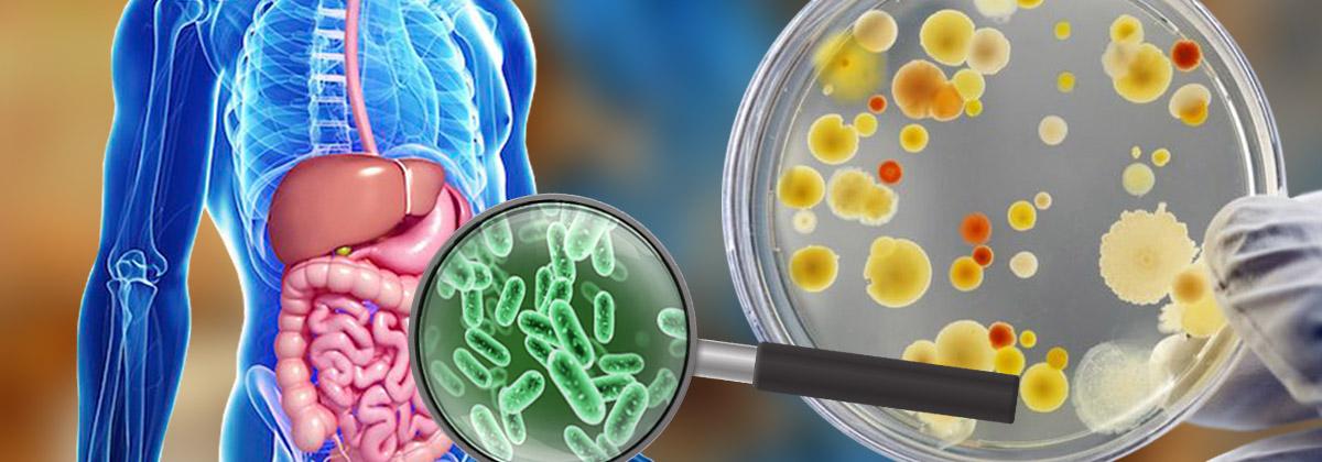 microbiotic